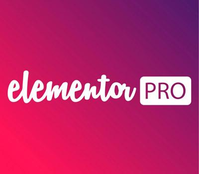 Elementor Pro Upgrade